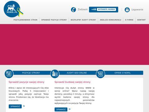 Noril.pl - pozycjonowanie strony Gdynia