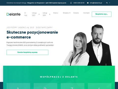 Delante.pl agencja SEO SEM