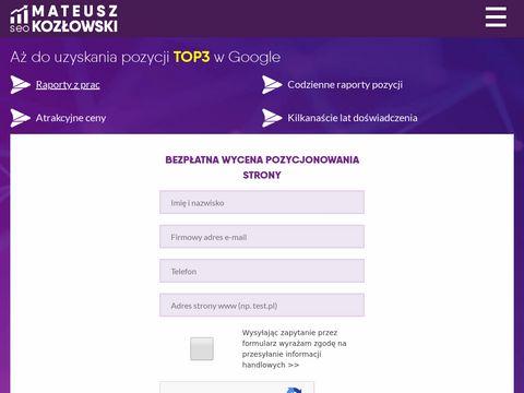 Mateuszkozlowski.pl pozycjonowanie serwisów
