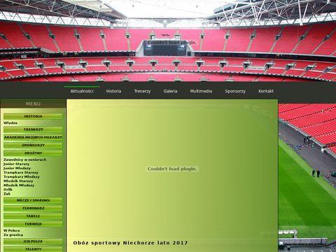 Akademia piłkarska - orlyrzeszow.com.pl