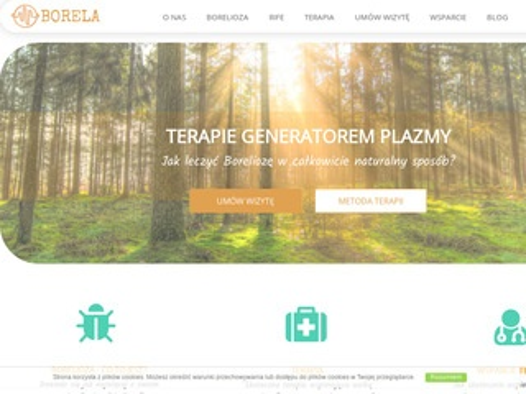 Borela.pl neuroborelioza koinfekcje w boreliozie
