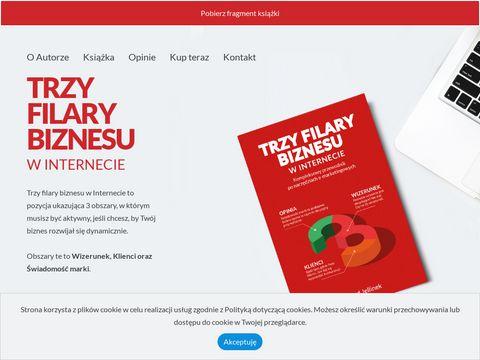 Trzyfilarybiznesu.pl wysoka pozycja strony