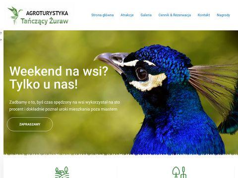 Tanczacyzuraw.pl Lubuskie agroturystyka