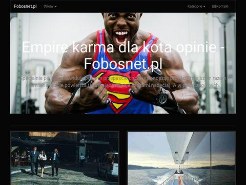 FobosNet IT dla biznesu