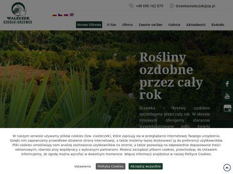 Drzewkawaleczek.pl szkółka drzewek