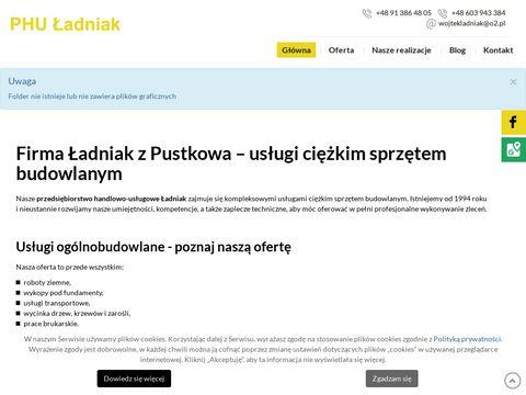 Robotyziemneladniak.pl Rewal