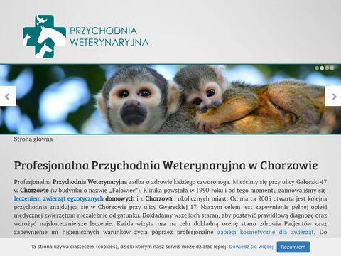 Weterynaria.slask.pl Nowakowski Wojciech